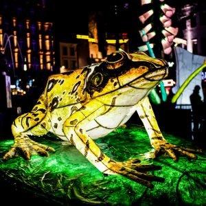Lumiere London 2018 Lantern Company Frog