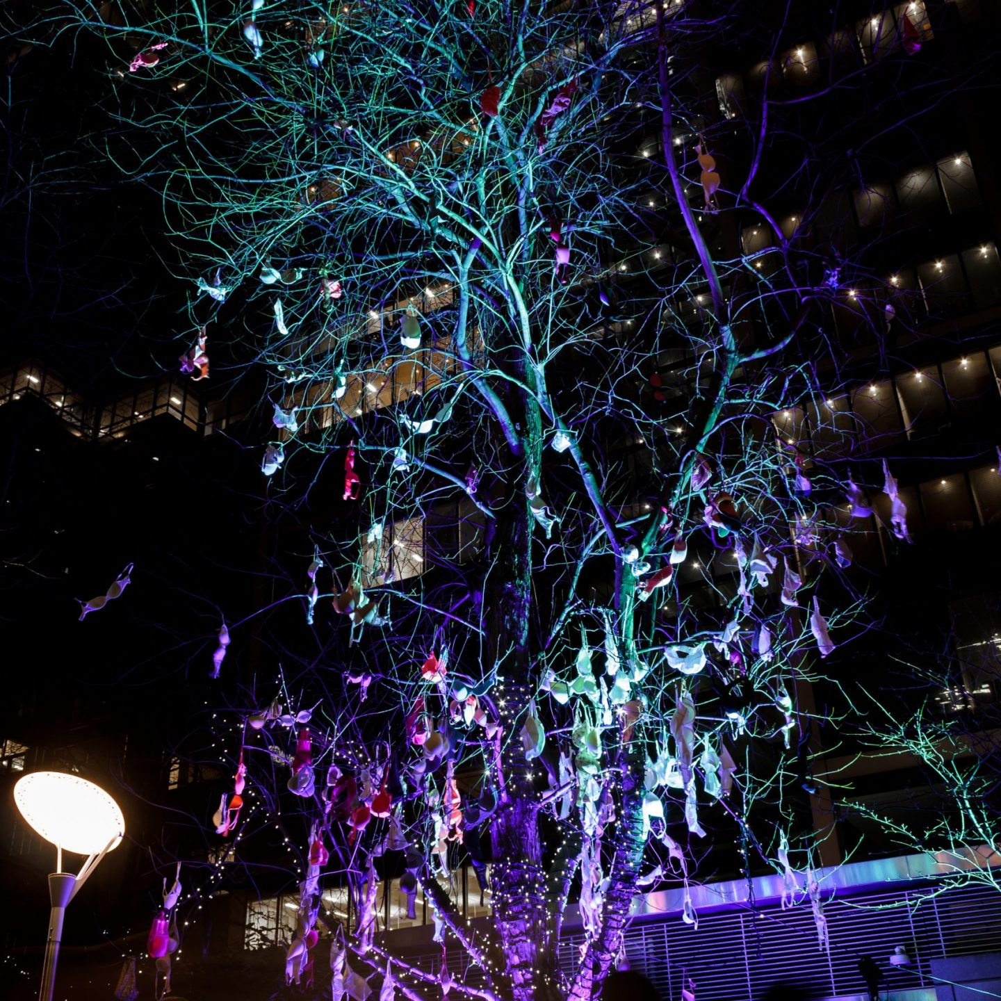 Canary Wharf Winter Lights 2020 - The Bra Tree for Breast Cancer Now